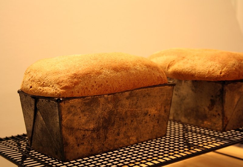Whole Wheat Bread, cooling