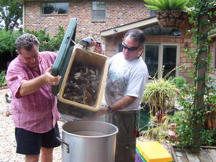 Adding crabs to the boiling liquid