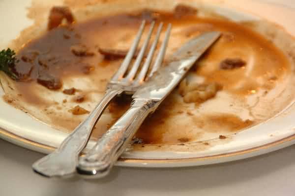 Dinner scraps